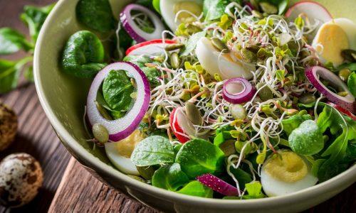11 cách làm salad ngon giảm cân đơn giản mà đầy đủ dinh dưỡng