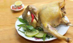 Cách làm món gà hấp muối sả ngọt thịt cực thơm ngon, hấp dẫn